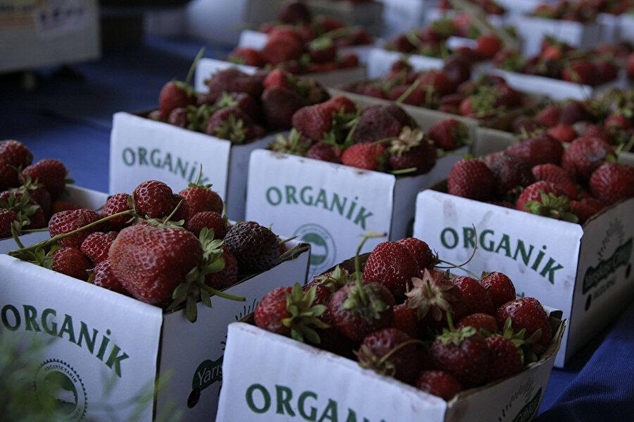 Organik pazardan alınan her mevsim yenir mi?