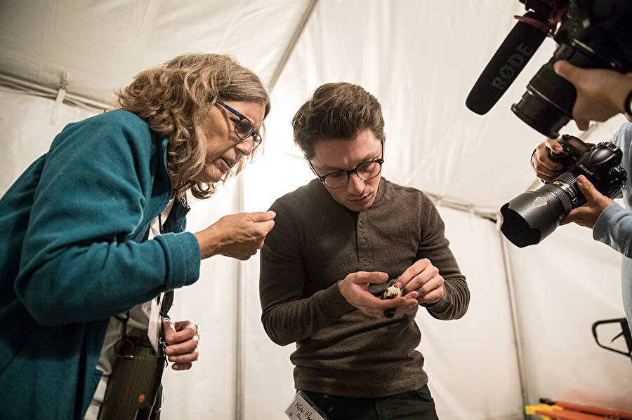 NYC Audubon Doğa Koruma ve Bilim Direktörü Susan Elbin ve Cornell Laboratuarı bilim adamı Kyle Horton, gökdelenlere çarparak ölen bir Amerikan Redstart cinsi kuşu inceliyor.
