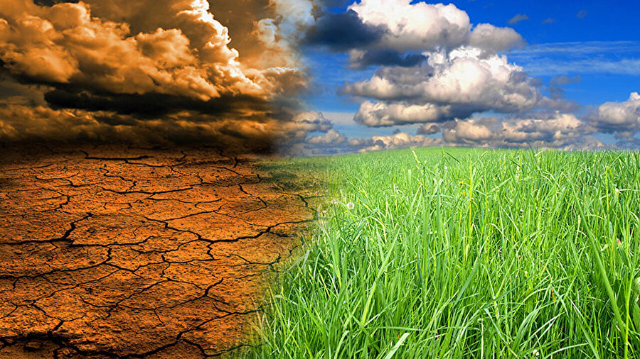 Yeşil alanların günden güne büyük bir hızla azalması, dünya atmosferini önemli oranda 'kötü' etkiliyor.
