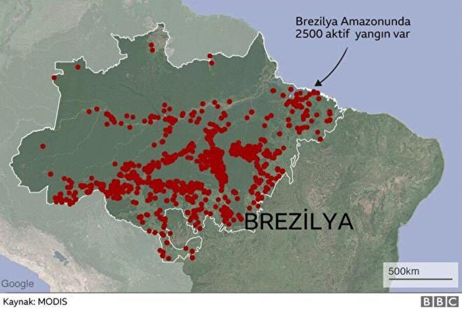 Amazon ormanlarında 2.500 noktada yangın devam ediyor.