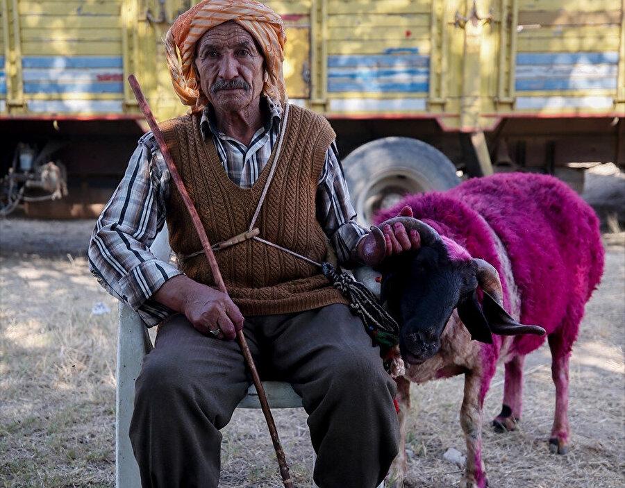 Ön elemeyi geçemeyen çobanlar gelecek yıl tekrar katılmak istediğini belirtti