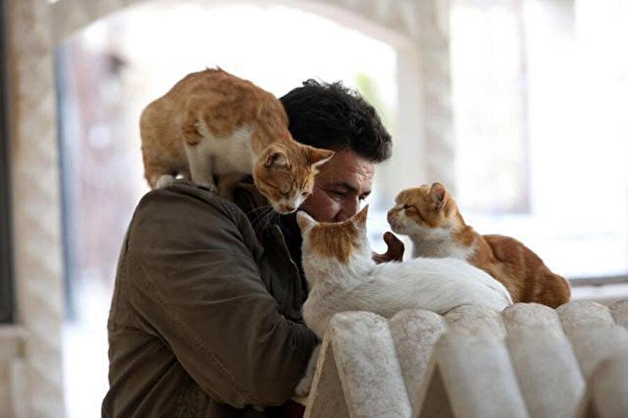 Halep'in sahipsiz kedileri artık Muhammed Ala'ya emanet.