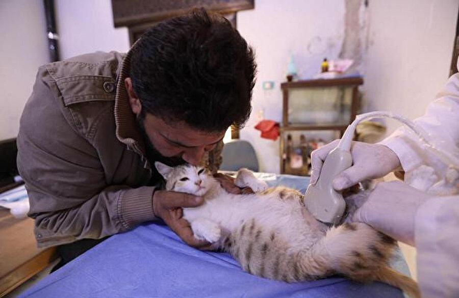 Ala'nın ön ayak olmasıyla inşa edilen barınakta hamile bir kedi ultrason yapılırken Ala, kedinin yanında...