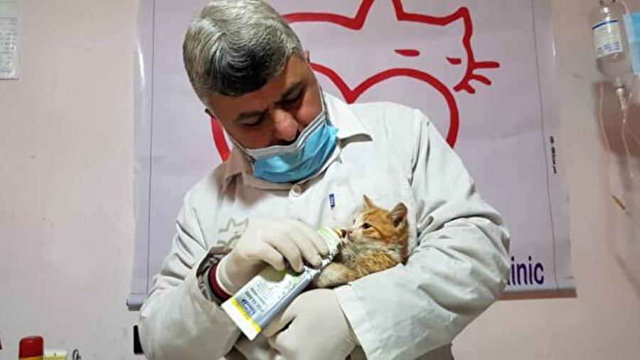 Barınağın veterineri Dr. Yusuf.