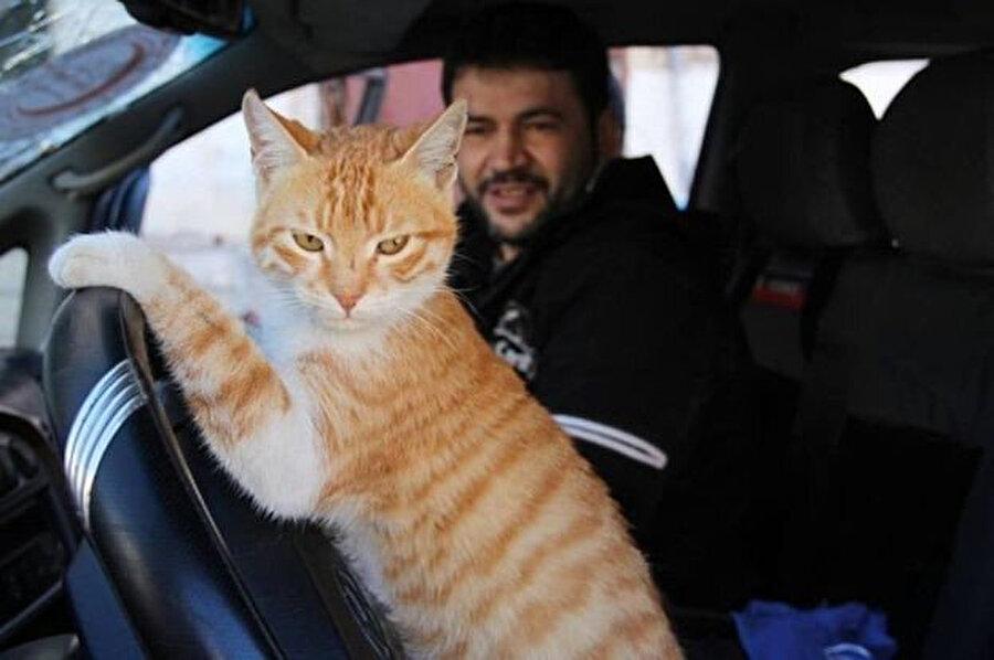 Ala ve kedisi Ernesto.