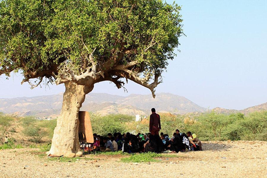 28 Ekim 2018'de çekilen bu fotoğrafta yerlerinden edilmiş öğrenciler, Yemen'in kuzeybatısındaki Hacca ilindeki Abs bölgesinin kuzeyindeki bir ağacın altında açık alanda ders işliyorlar.