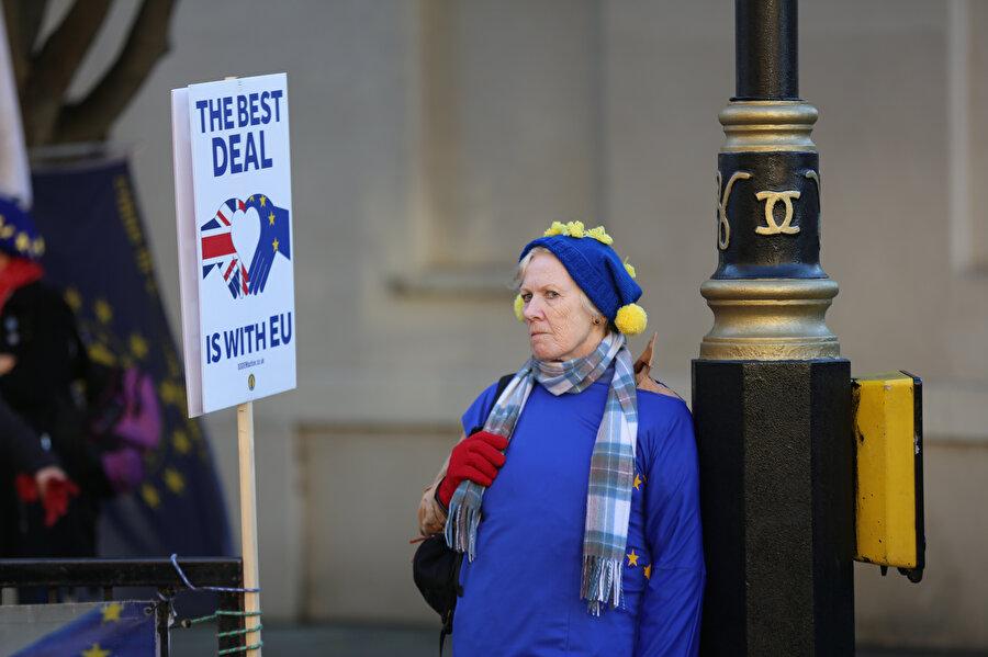 Brexit karşıtı bir vatandaş böyle görüntülenmişti.