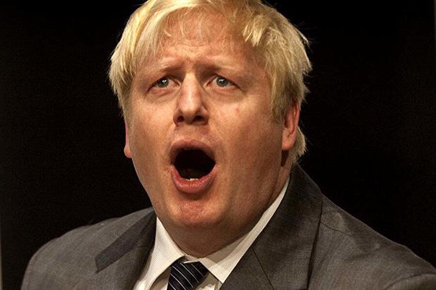 AB referandumunun mimarı olarak dönemin Başbakanı David Cameron'un istifasının önünü açtı