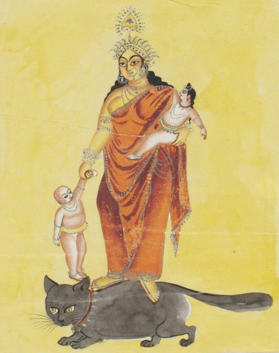 Ramayana'da ise Tanrı Indra, hizmetçisi Ahalya'yı kocasından kaçmak için kullanırken kendisini de bir kedi olarak gizlemişti. Mısır'da Bastet adlı tanrıçanın gördüğü hürmeti, Hintli kedi tanrıçası Sasht Hindistan'da görmüştü.