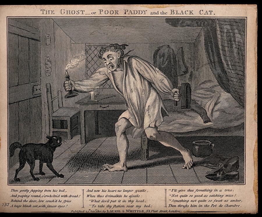 """1764 yılında Voltaire güzelliğin tanımının kişiden kişiye farklılık kazandığını anlatırken """"Şeytana sorunuz; size güzelin bir çift boynuz, dört cırnak ve bir kuyruk olduğunu söyleyecektir"""" der"""