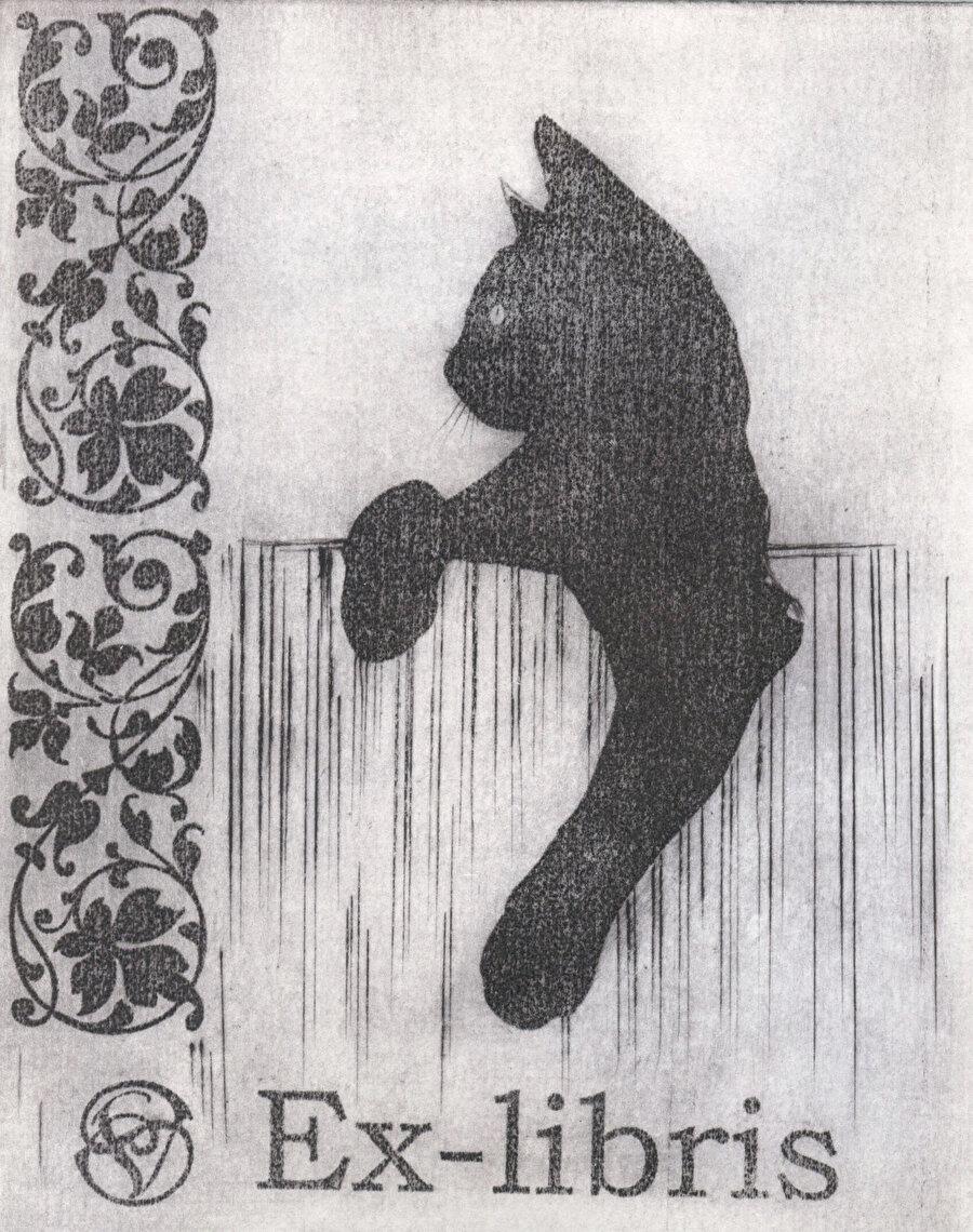 Kediler çoğunlukla fakir ve yaşlı kadınlar tarafından besleniyordu. Cadı avı başladığında onların yanında yoldaşları olan kediler de iş birlikçileri olduğu gerekçesiyle suçlandılar