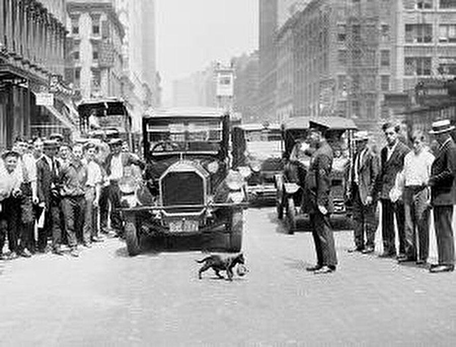 """Önceleri kedi sahibi olmak yalnızlıkla özdeşleştirilirken bugün kedilerin ailelerin önemli bir """"ferdi"""" konumuna yükseldiğini söylemek mümkün."""