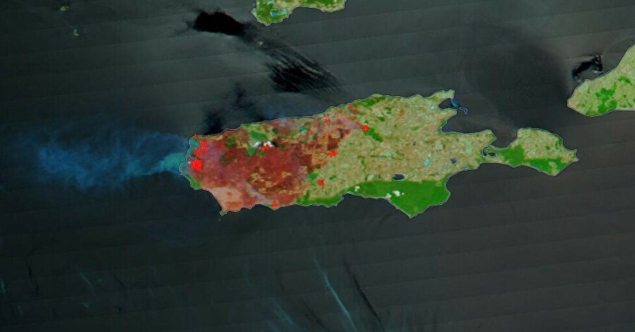 NASA'nın Terra uydusunun fotoğraflarında yeşil olan alanların yangın sonrası küle dönüştüğü gözler önüne serildi.