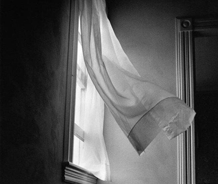 """""""Harold Feinstein, Bir Fotoğrafçının Mirası"""""""