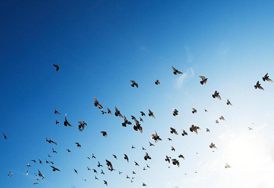 Rilke için ana kucağına sahip olamama özelliği, uçma yeteneği ya da kanatlı olma yeteneği elde etmek için bir girizgâhtır.