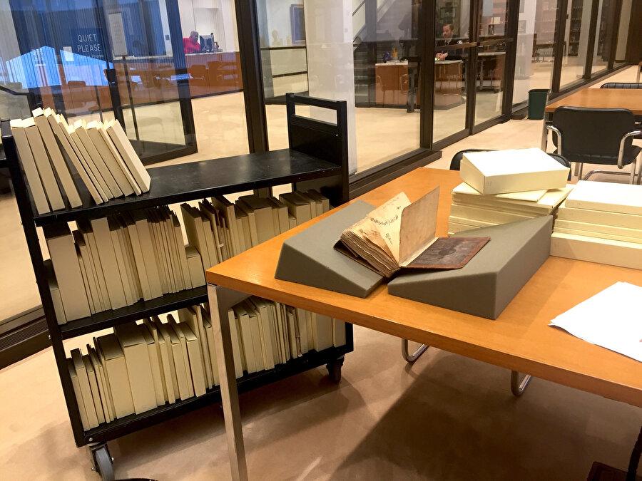 Fiziksel olarak yazma eserler için oldukça muhafazalı bir bina olarak dizayn edilen kütüphane, muhafaza ettiği 4597 kalem İslami yazma eser ile Princeton ve Los Angeles California Üniversitesi (UCLA)'nden sonra Amerika'nın da en fazla İslami yazma eserler barındıran kütüphanesidir.