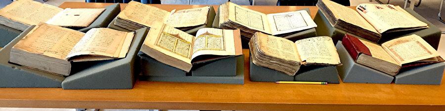 Türkçe yazma eserler muhtevaları itibarıyla siyer, fıkıh ve ilm-i hâllerden tutun da, tasavvuf, menâkıbname, tarih, tâbirnâme, havâs, tıp, baytarlık gibi pek çok mevzuya uzanan geniş bir yelpazede kaleme alınmışlar ise de bazı müellif ve şairler eserlerinin birden fazla nüshası ile sık sık karşımıza çıkarlar.