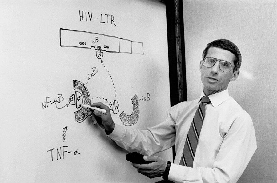 Dr. Fauci, hükümetin AIDS çalışmalarına öncülük eden araştırmacılardandı, 1990
