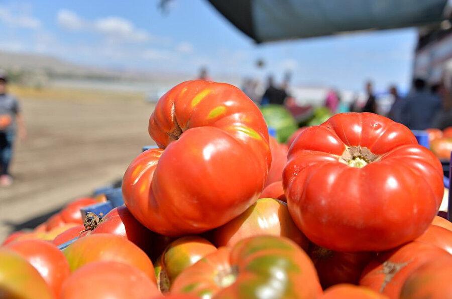 Karahıdır domatesi