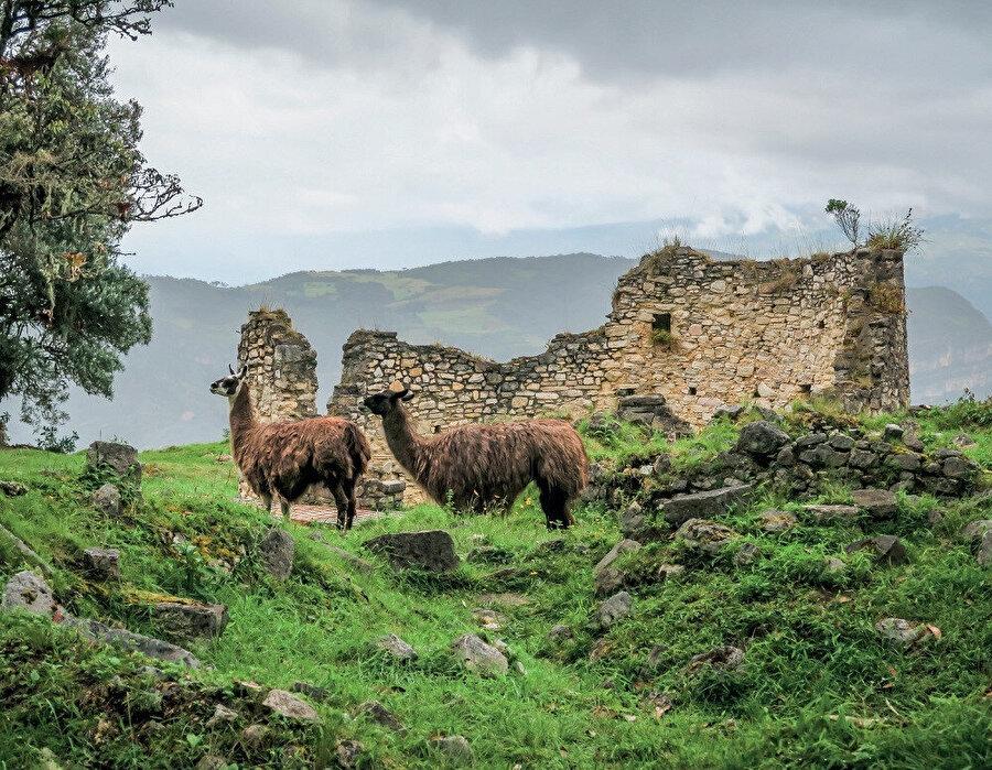 Kuêlap, Utcubamba Nehri'nin sol kıyısında, 3000 metre yükseklikte bir dağın tepesinde bir kireçtaşı sırtında yer almaktadır