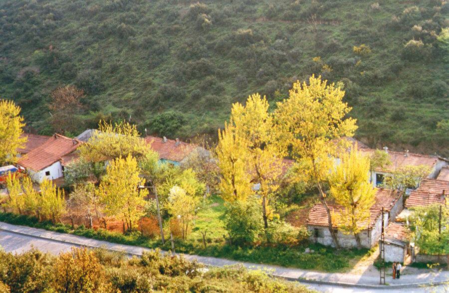 Evime yakın olması nedeniyle, ilk olarak Alibeyköy - Hasdal yoluna gidiyorum. Elimdeki fotoğrafa göre, yolun sağında bir grup evin olması gerekiyor. Yeşillikler içinde. Meyve ağaçlarıyla süslü bahçeler.
