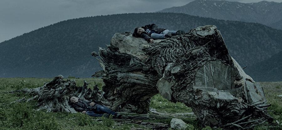 Çolağın, senaryosunu yazıp yönetmenliğini yaptığı Oyun, Kara Kar, Soğuk ve Serender filmleri, ulusal ve uluslararası festivallerde ödül aldı.