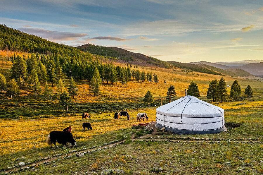 Hövsgöl, Moğolistan'ın 21 ilinden biridir. İl, ülkenin kuzeydoğusunda yer almaktadır.