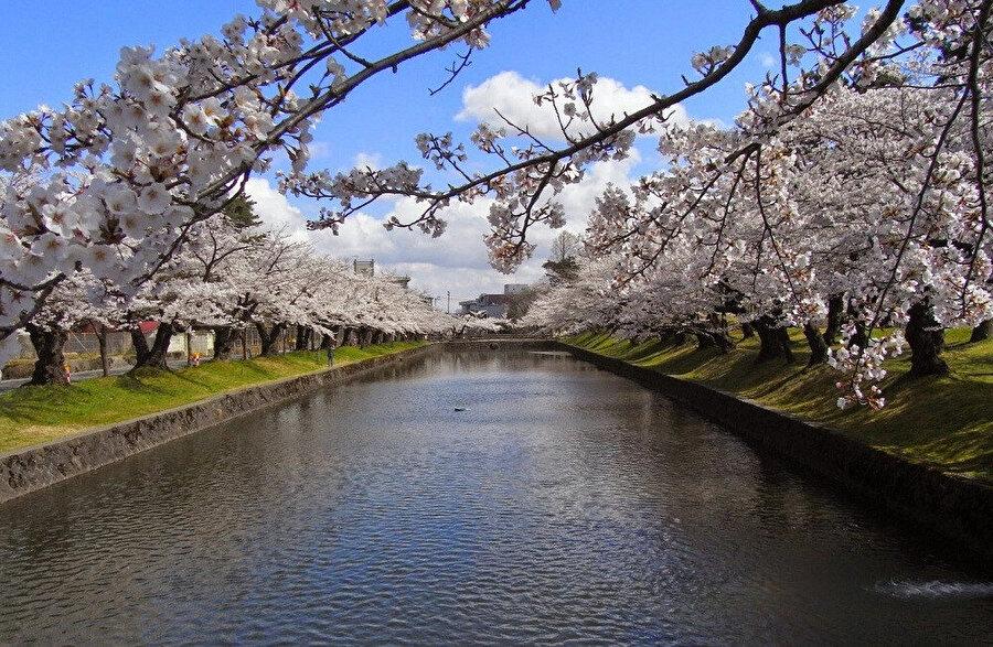 Tsuruoka - Japonya