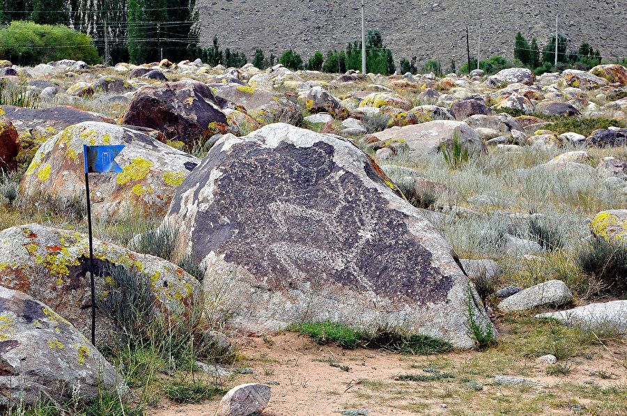 Kaya resimlerinde en belirgin motiflerden biri geyik figürü.