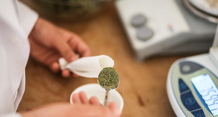 Stevia özütünün diyabet, hipertansiyon ve obezite hastalarında destekleyici tedavi olarak kullanıldığı ifade ediliyor.