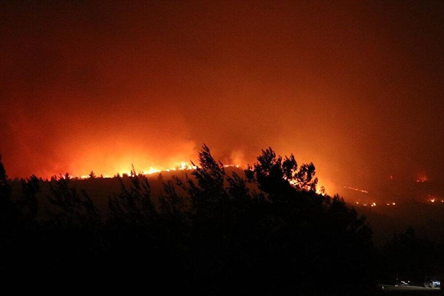 Yangın bölgesinden görüntüler