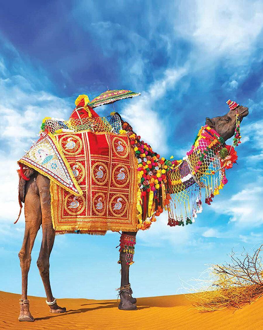 Ajmer'in yaklaşık 10 km kuzeybatısında ve Jaipur'un yaklaşık 150 kilometre güneybatısında yer almaktadır