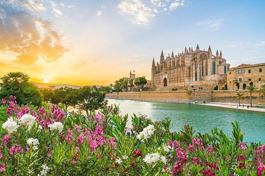 Ada nüfusunun yaklaşık olarak yarısı Palma de Mallorca ve etrafında bulunan şehirleşmiş bölgelerde yaşamaktadır.