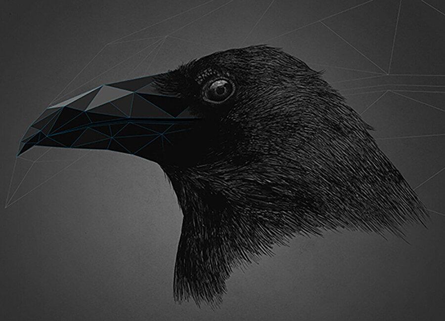 "Trigonal Meshes & Animals - ""Black Crystal""."