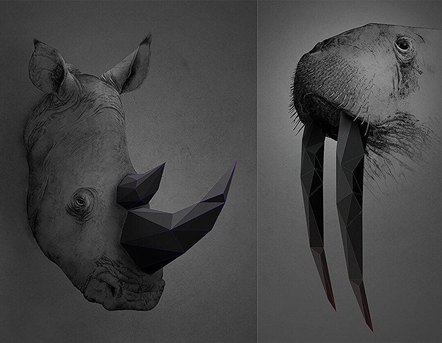 "Trigonal Meshes & Animals - ""Rhino"" ve ""Walrus""."