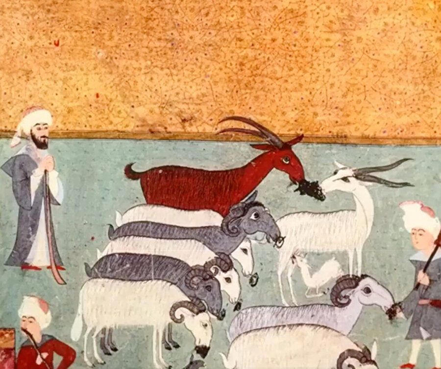 Bir şehzade yahut prenses tarafından yapılma ihtimali kuvvetli olan koyunların ağzındaki karalamalar.