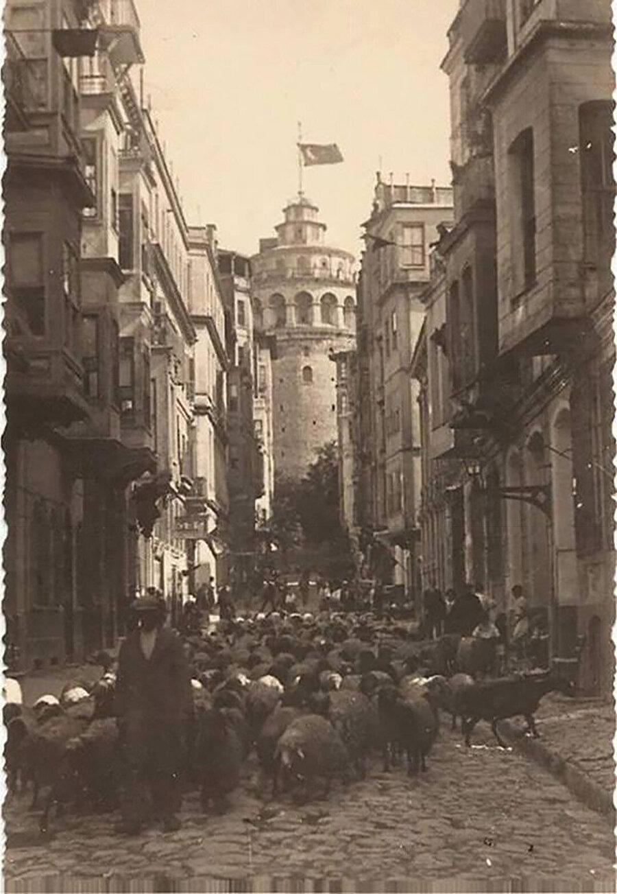 1930'da çekilmiş Galata Kulesi etrafındaki koyun sürüsü ve cumbalı evler.