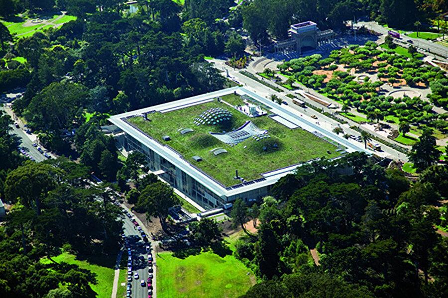 Müze 10 metre yüksekliğinde doğal bir topoğrafya gibi davranıyor.