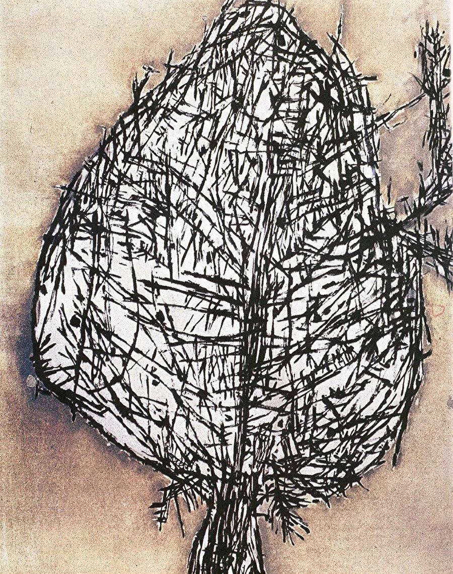 Kalkan Ağacı, 1966.