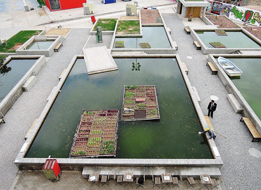 Proje dayk havuzu tekniğini kullanarak akuaponik yetiştiriciliği yapıyor. Sonrasında besin zinciri çeşitlenerek çoğalıyor.
