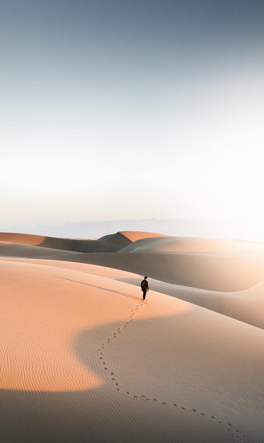 Çöl onun için bir arayış ibresi hükmündedir.