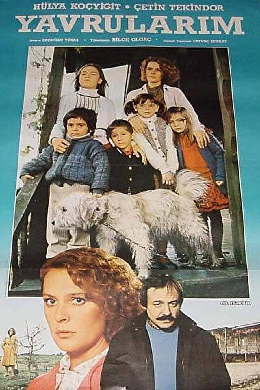 Hülya Koçyiğit ve Çetin Tekindor'un başrollerini paylaştığı, 1984 yapımı Yavrularım