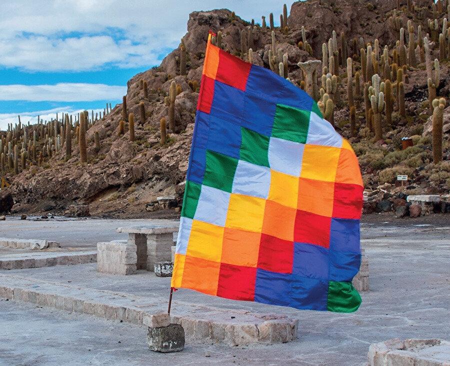 Wiphalas, çapraz olarak düzenlenmiş yedi renkte 7 × 7 kareden oluşur.