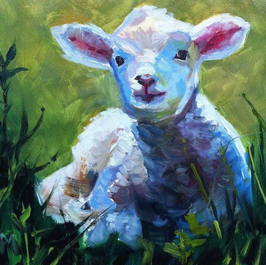 Koyunların nazik tabiatları kadar sahip oldukları güçlü hafıza ve gözlerini kullanma kabiliyeti de şaşırtıcıdır.