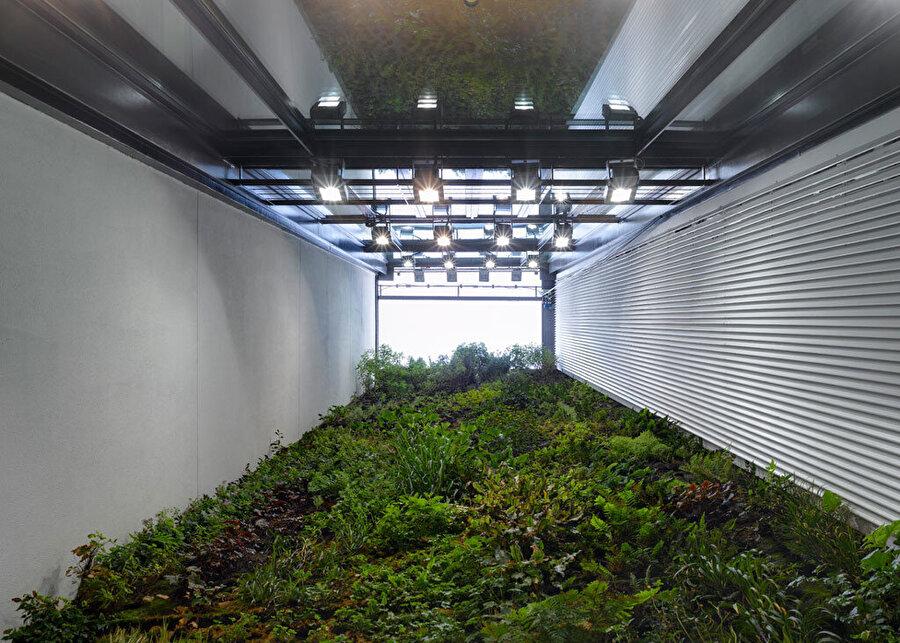 Mimarlar ve Han Tümertekin tarafından tasarlanan, 2F Evi'nin arka cephesinde yer alan, yeşil duvar tasarımı.