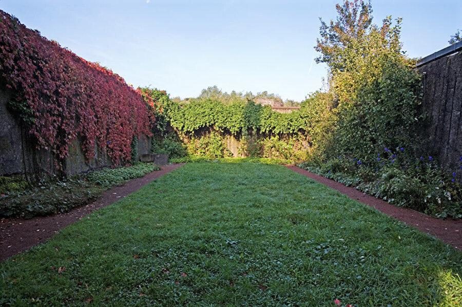 Bitki yoğunluğunun az olduğu bölgelerde alana uygun bitkiler kullanılıyor.