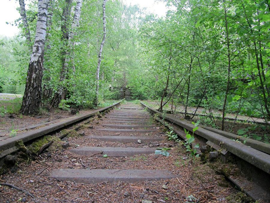 Parkın içinden geçen tren yolu.