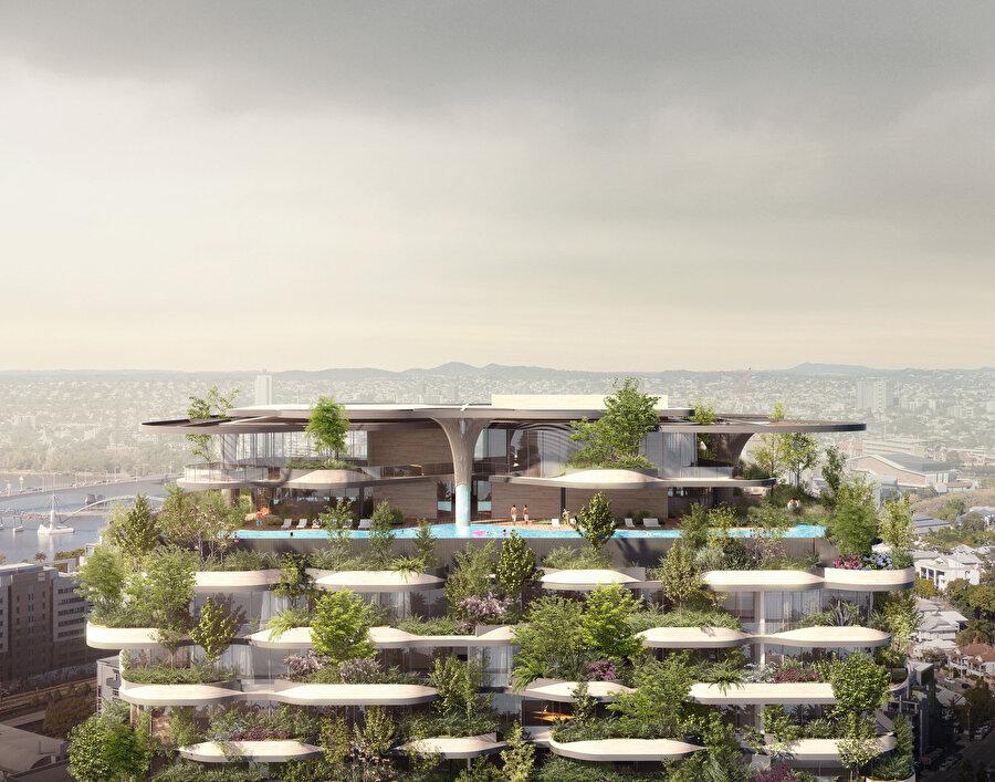 Çatı bahçesinde, havuz gibi ortak alanlar bulunuyor.