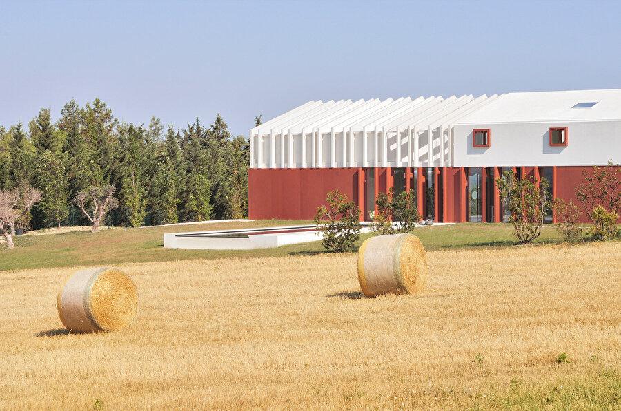 Evin etrafını çevreleyen tarlalarda buğday, arpa, bakla ve ayçiçeği yetişiyor.