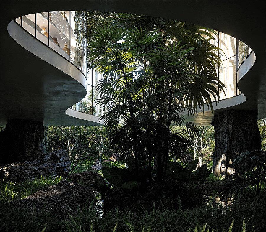 Modern ev, çevredeki bitki örtüsüyle şekillenerek kıvrılan geniş, organik bir iç avluya açılıyor.